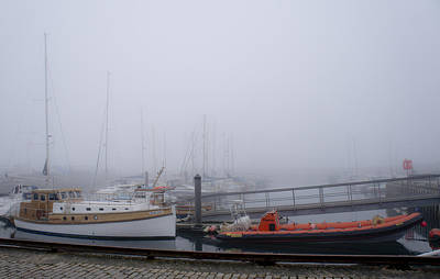 Anstruther Photograph - Fog In Marina IIi by Elena Perelman