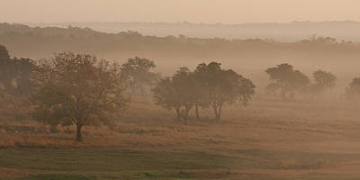 Kerr County Photograph - Fog In The Hills 2 by Paul Huchton