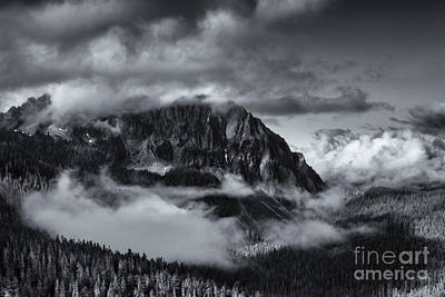 Mt Rainier National Park Photograph - Fog In The Valley by Mike Dawson