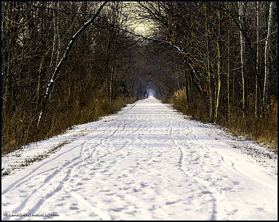 Background Photograph - Fog On The Winter Macomb Orchard Trail by LeeAnn McLaneGoetz McLaneGoetzStudioLLCcom