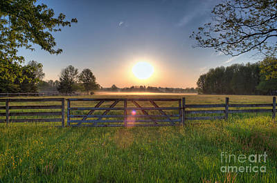 D700 Photograph - Foggy Field by Michael Ver Sprill