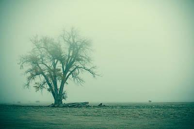 Foggy Morn Print by Todd Klassy