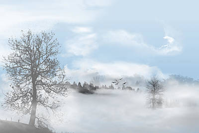 Winter Photograph - Foggy Morning by Bijan Studio