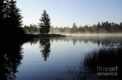 Foggy Morning Print by Larry Ricker