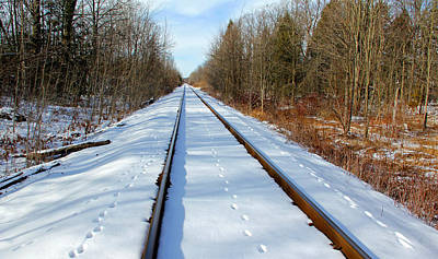 Train In The Winter Photograph - Follow Your Own Path by Debbie Oppermann