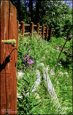 Pathways Photograph - Foot Bridge At Lake Tahoe California  by LeeAnn McLaneGoetz McLaneGoetzStudioLLCcom