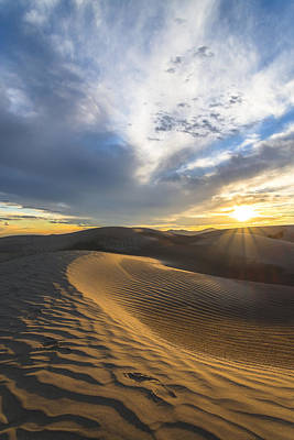 Utah Photograph - Foot Prints In The Sand by Dustin  LeFevre