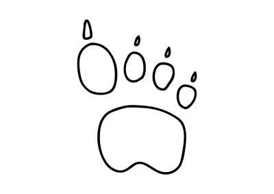 Bear Paw Drawing - Footprint Bear Wulf Tiger by Lineamentum