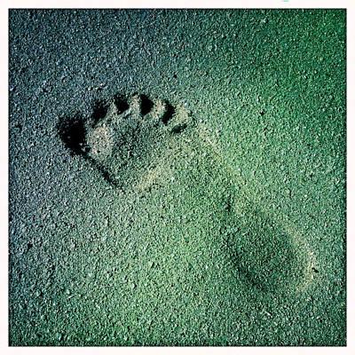 Footprint In The Sand Print by Heidi Piccerelli