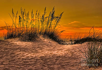 Footprints In The Sand Print by Marvin Spates