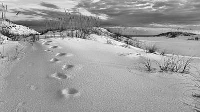 Footprints Print by JC Findley
