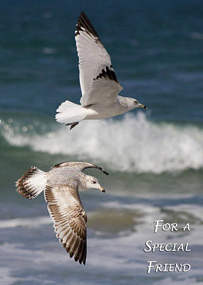 For A Special Friend Print by Dawn Currie