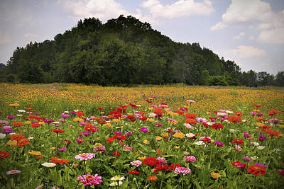 Tennessee Photograph - For The Beauty Of The Earth by T Lowry Wilson