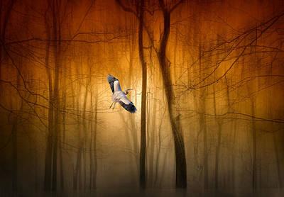Forest Flight Print by Jessica Jenney