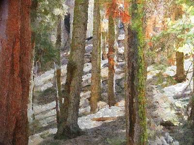 National Park Painting - Forest For The Trees by Jeff Kolker