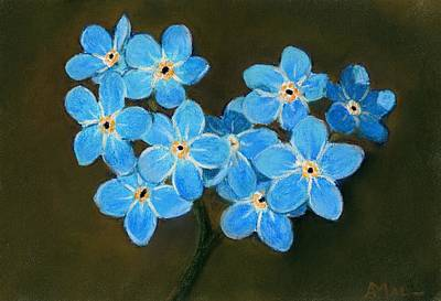 Pastels Painting - Forget-me-not by Anastasiya Malakhova