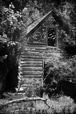 Log Cabin Photograph - Forgotten Log Cabin by Cindy Singleton