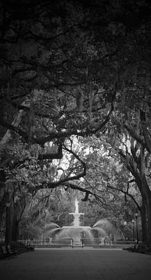 Forsythe Park Print by Amy Larson
