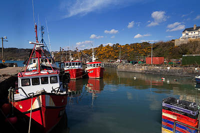 Foshing Boats In The Harbour Print by Panoramic Images