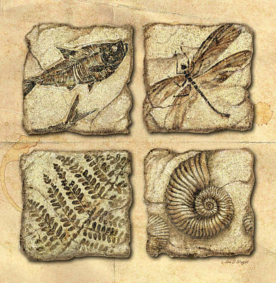 Wright Painting - Fossils by JQ Licensing