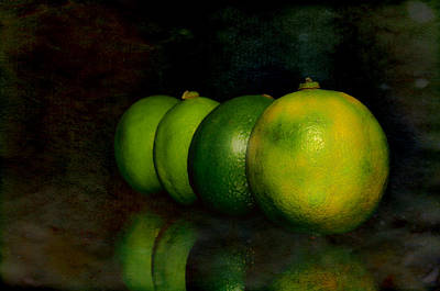 Lime Photograph - Four Limes by Toppart Sweden