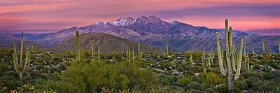 Cholla Photograph - Four Peaks Sunset Panorama by Dave Dilli