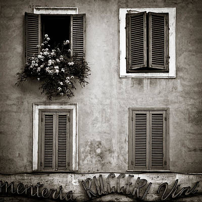 Sepia Flowers Photograph - Four Windows by Dave Bowman