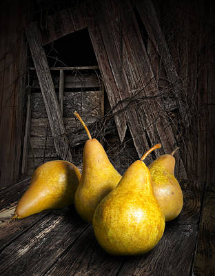 Four Yellow Pears Print by Randall Nyhof