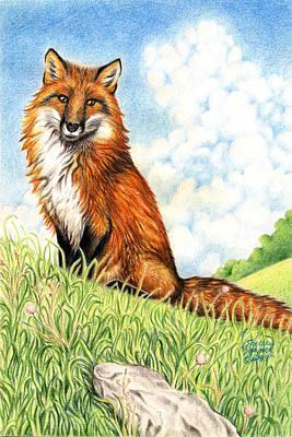 Fox In The Meadow Print by Shelley Szajner