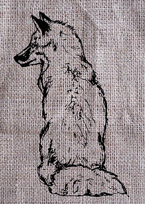 Red Foxes Drawing - Fox On Burlap  by Konni Jensen