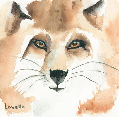 Fox Kit Painting - Fox Study 2 by Kimberly Lavelle