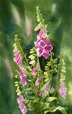 Foxglove Flowers Painting - Foxgloves With Background by Sharon Freeman