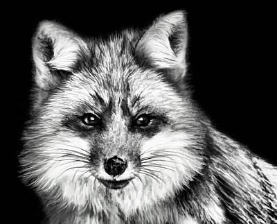 Foxtrot Print by Steven Richardson