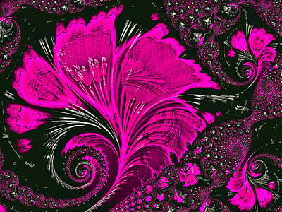 Fractal Flowers Print by HH Photography of Florida
