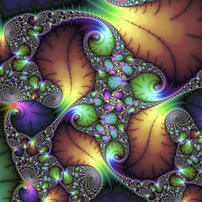 Floral Digital Art Digital Art Digital Art - Fractal Floral Art With Decorative Colors Square Format by Matthias Hauser