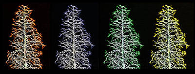 Fractal Seasons - Inverted Tetraptych Print by Steve Ohlsen