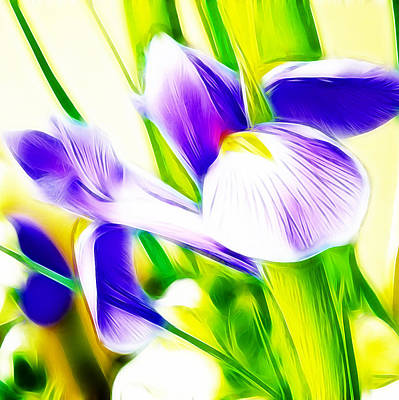 Irises Digital Art - Fractalius Iris by Sharon Lisa Clarke