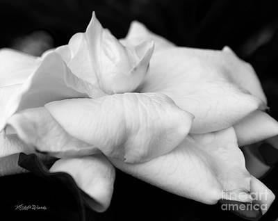 Fragrant Petals Print by Michelle Wiarda
