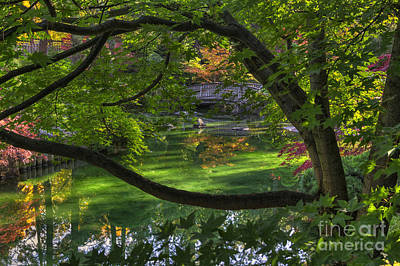 Framed Bridge -  Nishinomiya Japanese Garden Print by Mark Kiver