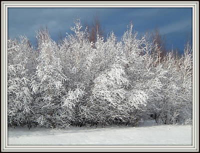Evangeline Photograph - Framed By Frost by Karen Cook