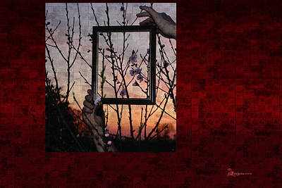 Framed Cherry Blossoms - Featured In Comfortable Art And Nature Groups Print by EricaMaxine  Price