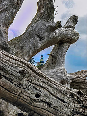 Framed Lighthouse Print by Robert Bales