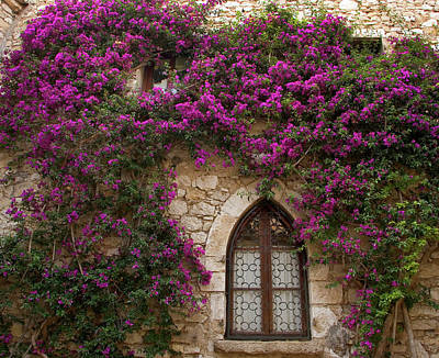 Provence Photograph - France, Provence, Eze by Jaynes Gallery