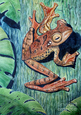 Freckles Tree Frog Print by Joey Nash