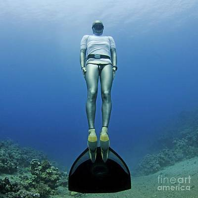 Freediver Underwater Print by Photostock-israel