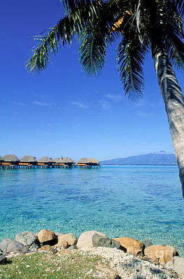 Moorea Photograph - French Polynesia Tahiti Moorea by Anonymous