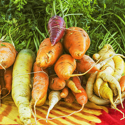 Heart Healthy Photograph - Fresh Carrots by Vishwanath Bhat
