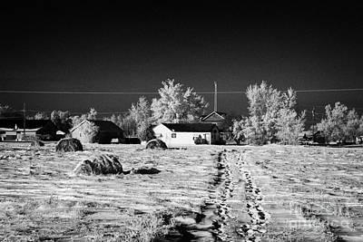 fresh footprints crossing deep snow in field towards small rural village of Forget Saskatchewan Cana Print by Joe Fox