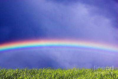 Fresh Grass And Sky With Rainbow Print by Michal Bednarek