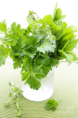 Nutrition Photograph - Fresh Herbs In A Glass by Elena Elisseeva